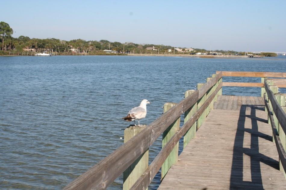 Intracoastal River in Port Orange
