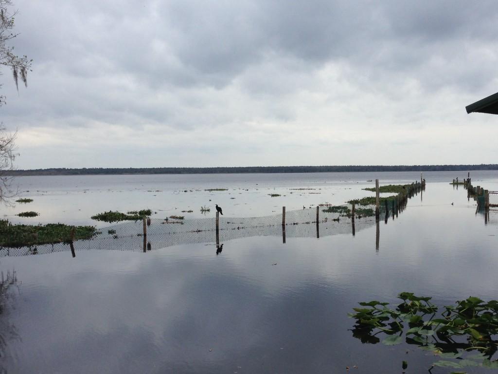 Lake George Volusia County
