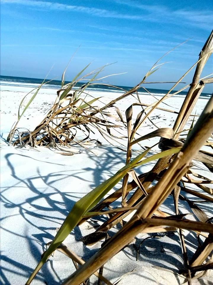 beach2-020415rachel