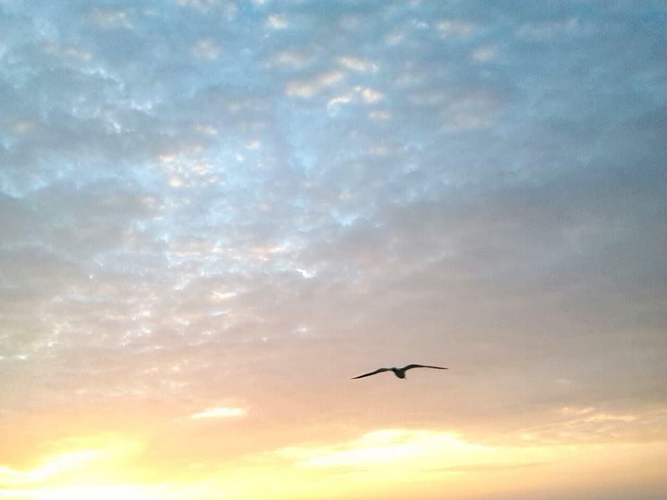 sunrise3-0216rachel