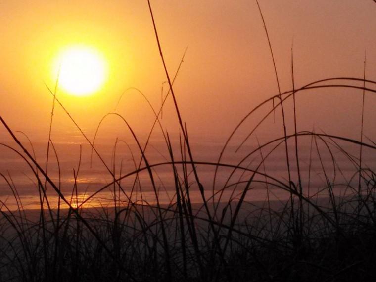 sunrise0305walter