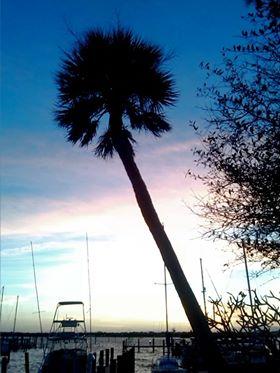 sunsetfeb16rachel